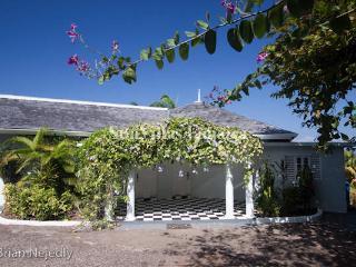 Serendipity - Spring Farm, Montego Bay 6 Bedrooms - Montego Bay vacation rentals