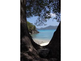 POINTS of VIEW, EAST END, ST. JOHN  10% OFF NOW! - Coral Bay vacation rentals