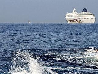 Ocean Front Commuity 2 bedroom 2 bath! Great Views - Kailua-Kona vacation rentals