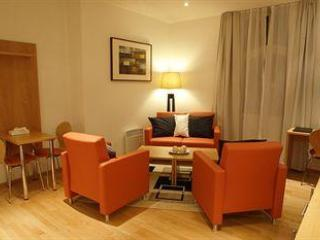 Superior Apartments in Oslo Commercial Centre - Oslo vacation rentals