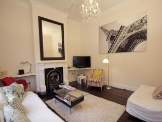 Central period residence,with a contemporary charm - Dublin vacation rentals