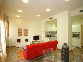 Luxury flat in the Heart of Valencia - Carmen - Valencia vacation rentals