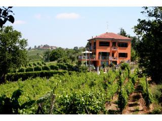 Villa I Due Padroni Bed&Breakfast with pool - Mornico Losana vacation rentals