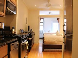 Luxury Aprtment with two Queen size beds - New York City vacation rentals