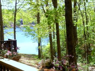 Woodland Cove Lakeview Apartment at Lake Coronado! - Hot Springs Village vacation rentals