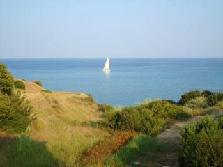 Nice Condo with Internet Access and Garden - Skala vacation rentals