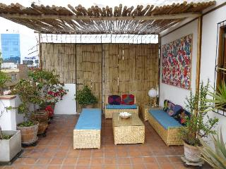 Top Floor 645 Ft2,terrace 430 Ft2 on 3 Story House - Lima Region vacation rentals