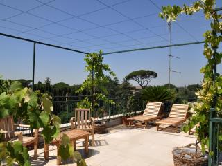 Big Colosseum penthouse with roof garden over Rome - Rome vacation rentals