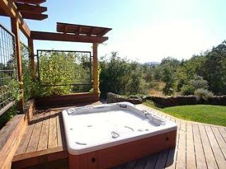 Luxury Tuscan Vineyard Villa on 5 Gated Acres - Healdsburg vacation rentals