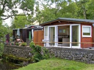 RIVER'S NEST, romantic, country holiday cottage, with a garden in Llangynog, Ref 3799 - Llangynog vacation rentals