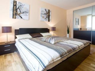 De Luxe Two Bedroom Apartment in Prague Centre - Prague vacation rentals