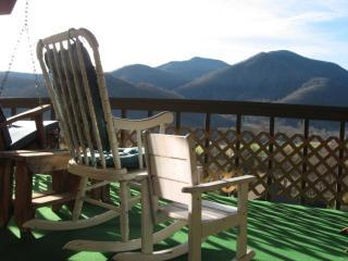 Mountain View, WI-FI, Easy Access, KIDS Ski FREE - Maggie Valley vacation rentals
