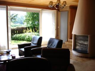 Swiss Chalet on The Beautifull Aegeri Lake - Unteraegeri vacation rentals