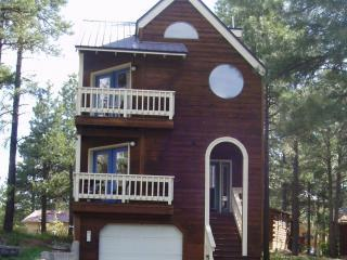 Front of House - House in The Trees - Pagosa Springs - rentals