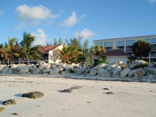 Beautiful Oceanfront 2 and 3 Bdrm Townhomes - Freeport vacation rentals