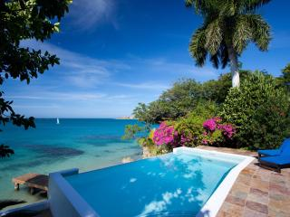 Award-winning villa with private beach and pool - Whitehouse vacation rentals