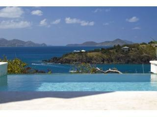 View off Oceana pool towards St Thomas - Oceana luxury  6 bed villa Great Cruz St john USVI - Cruz Bay - rentals