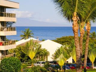 Ocean View from the Lanai - A Maui Banyan Favorite! 1BR/2BA Ocean View+Modern Tropical Style+Steps to Beach - Kihei - rentals