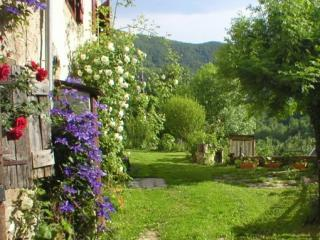 "The garden in summer. - ""Le Pichet""for 2-4 pers. Charming home/garden in mountain hamlet, UK TV winner. - Oust - rentals"