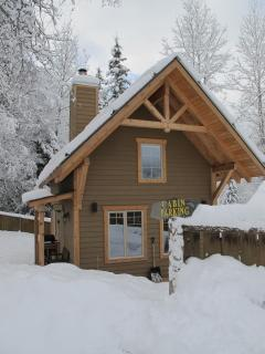 Perfect Cabin with Deck and Internet Access - Field vacation rentals