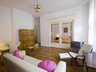 City center, free wi-fi, children stay free - Budapest vacation rentals