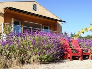 Modern Sophisticated Private Views & Hot Tub - California Wine Country vacation rentals