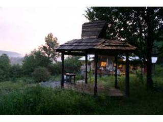 Nice House with Deck and Garden - Schuyler Lake vacation rentals