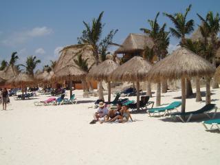 bands 038 - Playaescape-Playa del Carman - Playa del Carmen - rentals