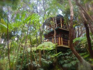 Exotic Treehouse at Kilauea Volcano on Big Island - Volcano vacation rentals