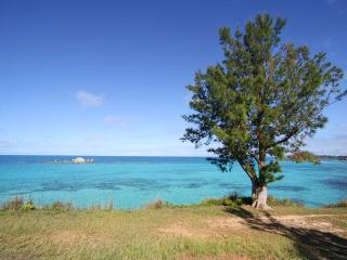 E05. Oceanfront Apartment with Lovely Water Views - Hamilton Parish vacation rentals