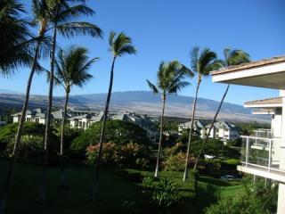 Vista D-301 Award Winner Penthouse w/BBQ and View - Waikoloa vacation rentals
