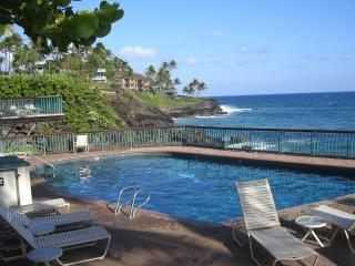 Oceanfront pool - Poipu Shores 101B 1BR Oceanfront Experience w/ A/C - Poipu - rentals