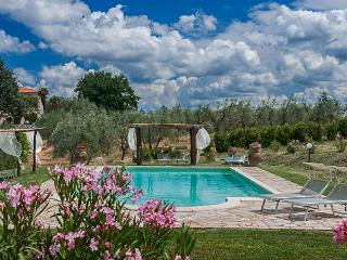 Apartments in Villa Near Pisa. Breathtaking views. - Pisa vacation rentals