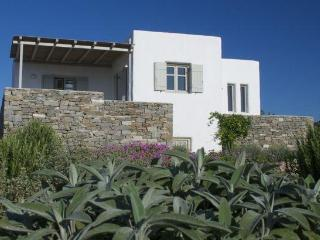 Villa Elia - Kid friendly next to best beach - Paros vacation rentals
