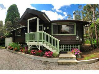 Hale Sweet Hale is surrounded by towering ohia trees and magnificent hapu\'u ferns. - Hale Sweet Hale- Log Cabin with New Hot tub! - Volcano - rentals