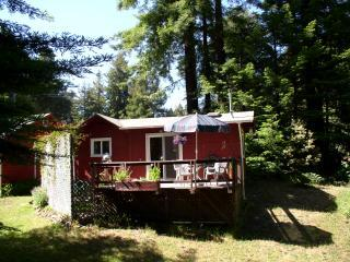 Romantic Cottage with Deck and Internet Access - Fort Bragg vacation rentals