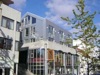 Penthouse Apartment in Central Reykjavik - Husafell vacation rentals