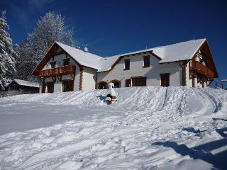 VILLA VICTORIA- Luxury Family House near lake&ski - Lipno nad Vltavou vacation rentals