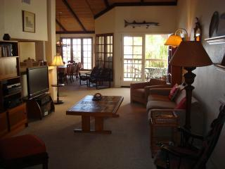 new LR 126.JPG - Oceanfront Condo Encinitas, 126 Direct Beach, Pool - Encinitas - rentals