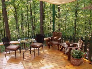 """Sunny Oaks """"Casita"""" Studio - Hot Springs Village vacation rentals"""