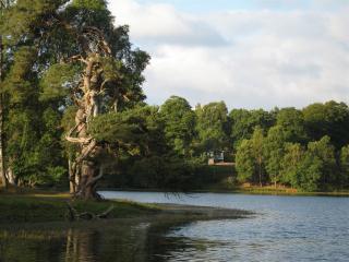 Cedar Lodge - perfect views over Loch Monzievaird - Crieff vacation rentals
