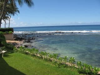 Poipu Beach House / Front yard - Poipu Beach House - Poipu - rentals