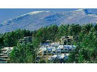 That's us - snuggled up against the ski hill - nice, eh? - Stowe Vt's Theatre in the Woods-Fun for All - Stowe - rentals