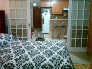 Vacation Condo Rental - Manila Philippines - Manila vacation rentals