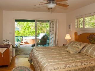 Cloud 9 Relaxation-Mountaintop Views-Hot Tub-Peace - Asheville vacation rentals