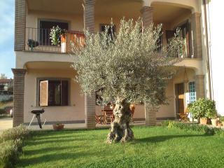Home - B&B La Rocca - Bassano Romano - rentals