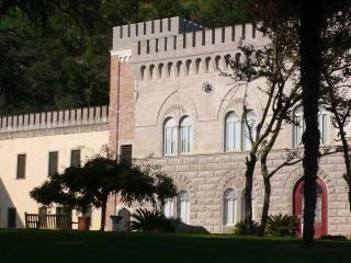 Charming and Historic Castle Apartment in the Veneto Region - Castello Ricco - Il Re - Monselice vacation rentals