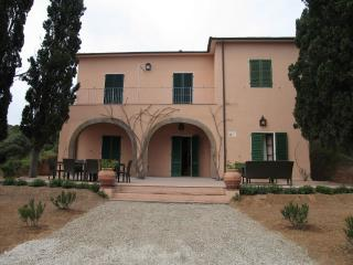 Villa Ape - Capoliveri vacation rentals