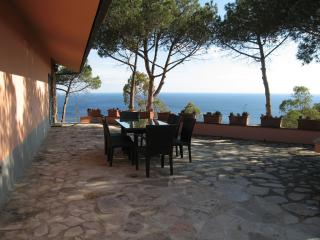 Villa Eucalipto - Capoliveri vacation rentals