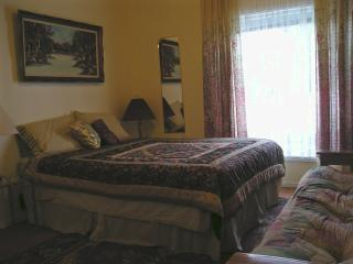 THE great new SUITE - MINI APARTMENT at SUSAN'S - Niagara Falls vacation rentals